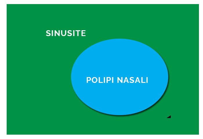 Cos E La Sinusite Definizione E Cause Della Sinusite